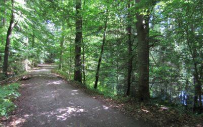 Aktualizacja szlaków w okolicy Bydgoszczy
