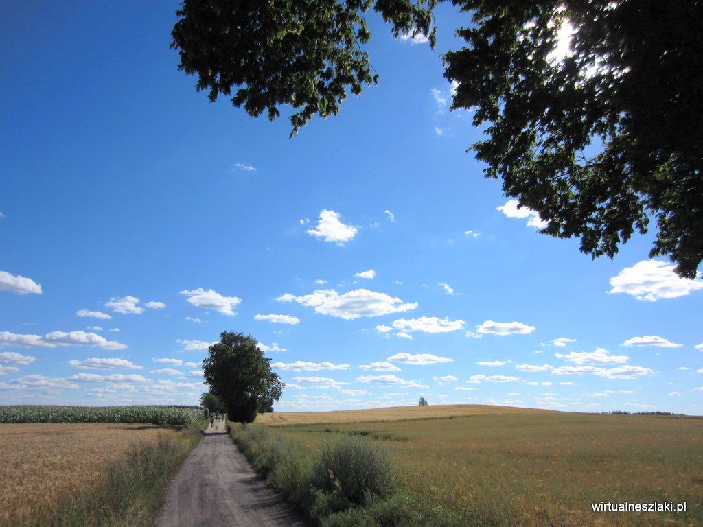 Piaszczysta droga na szlaku