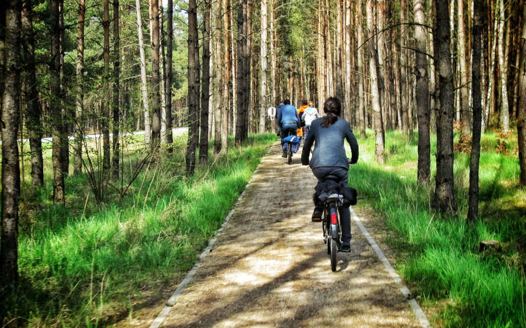 Kaszuby – trasy, szlaki rowerowe i piesze 馃毚