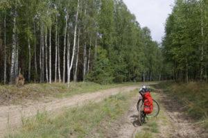 Trasy rowerowe w Borach Tucholskich fot. ks. G Kortas