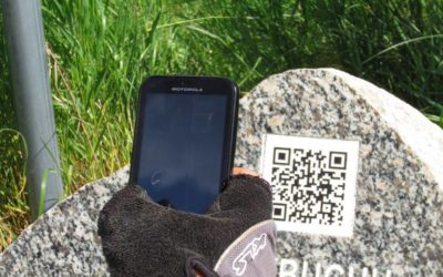 Mówiące kamienie w Borach Tucholskich