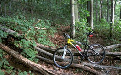 POMYSŁ NA WEEKEND: Rowerem górskim w okolicach Bydgoszczy