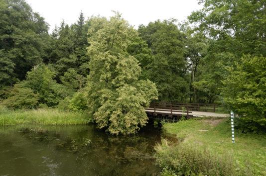 Brda na szlaku do Piekiełka nad Brdą fot. ks. G Kortas