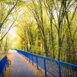 Szlak rowerowy Bydgoszcz - Koronowo Skrajem doliny Brdy przed mostem