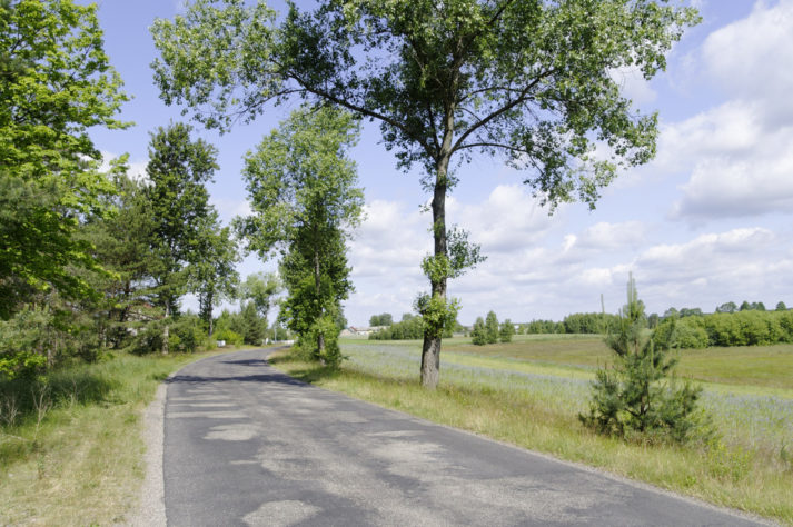 Na szlaku Borowej Ciotki fot. ks. G Kortas