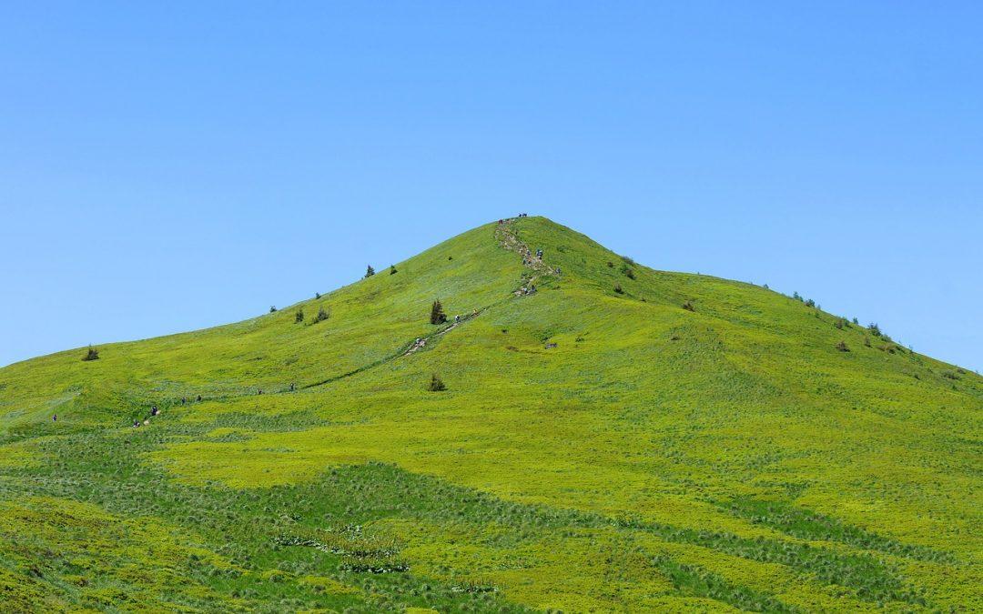 Zielona góra atrakcje dla dzieci i młodzieży – 10 atrakcji