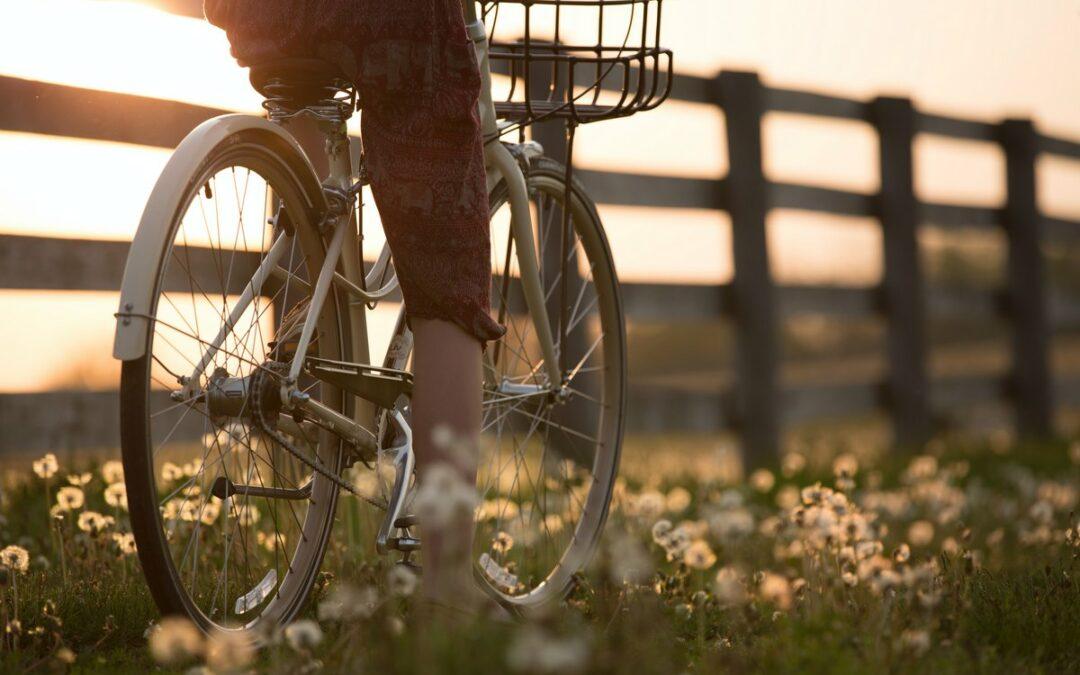 Co warto zobaczyć w Szwecji zwiedzając ją rowerem – dlaczego warto w ten sposób zwiedzać?