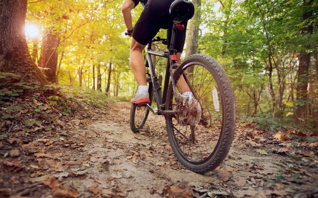Sprawdź, jak wybrać odpowiednie rozmiary kół w rowerze.