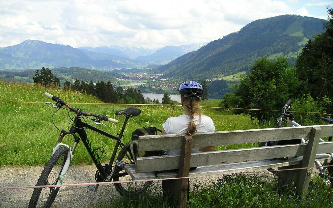 Dlaczego na długiej trasie warto postawić na rower szosowy?
